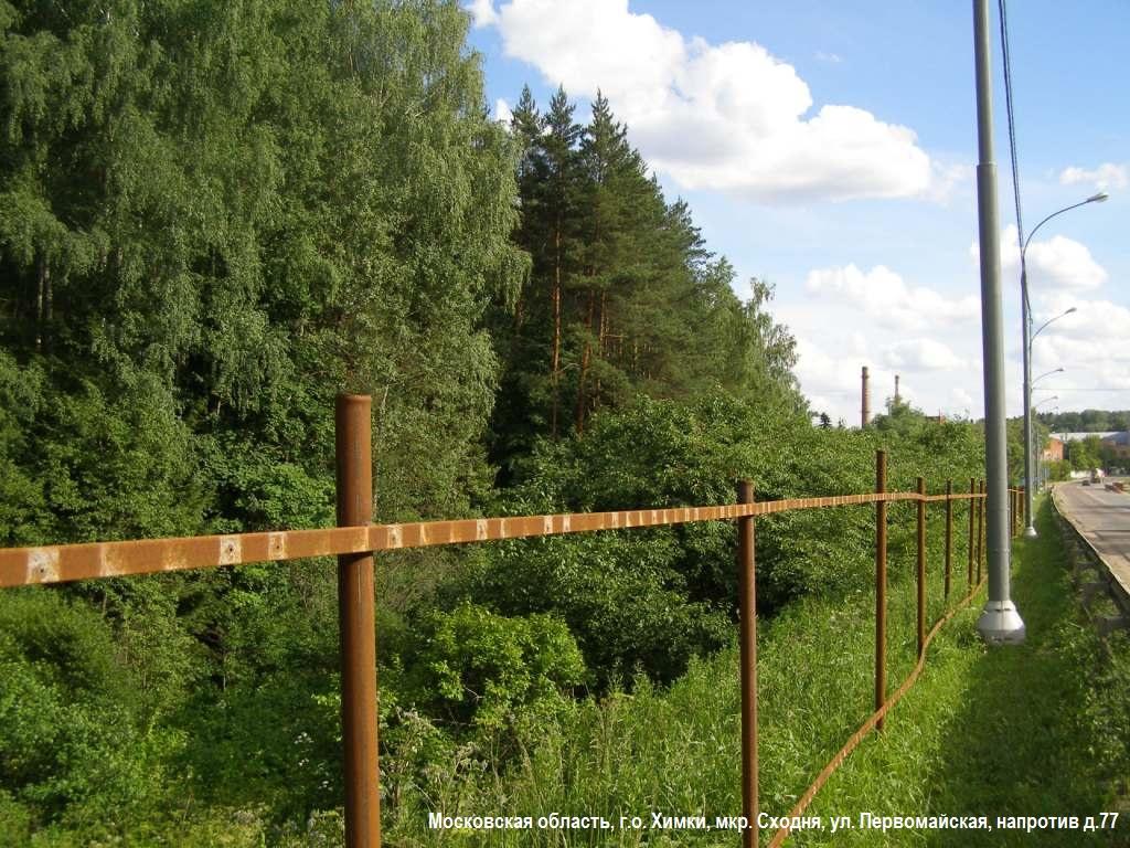 07-2014-лес забор каркас 1