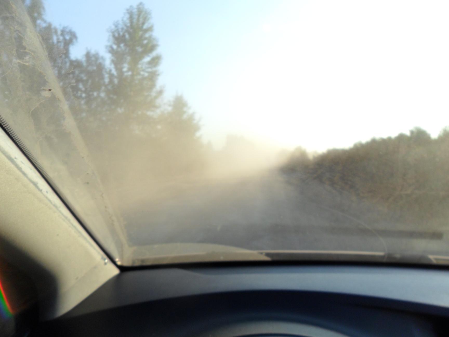 Пыль 4