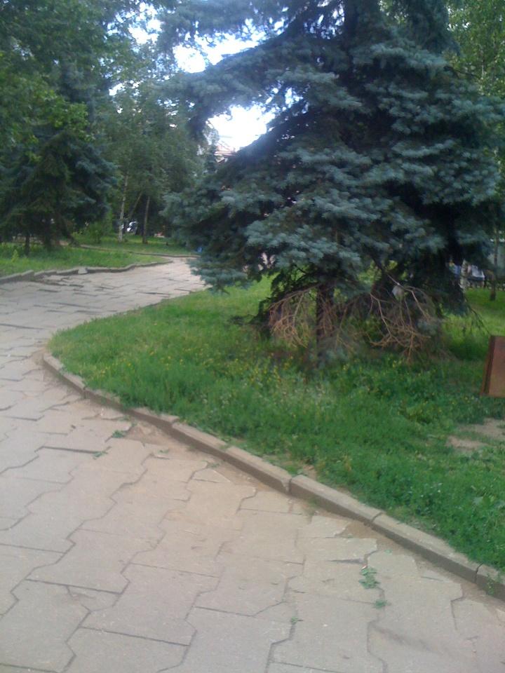 Skver-2012-07