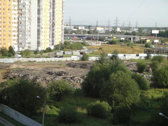 Vyrubka-08-2012