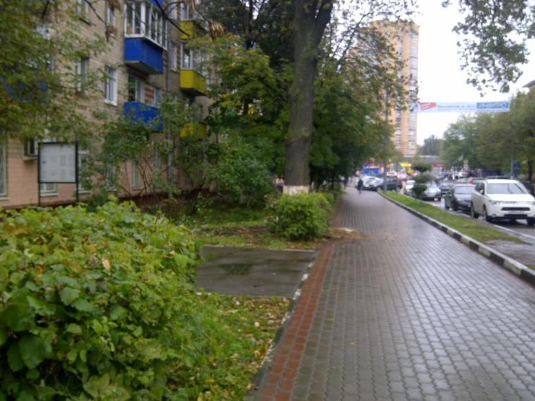 Vyrubka-Mosk-16-3