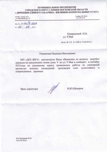 DEZ-vyrubka1