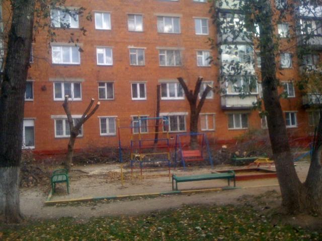 Vyrubka-23-10-2013-2
