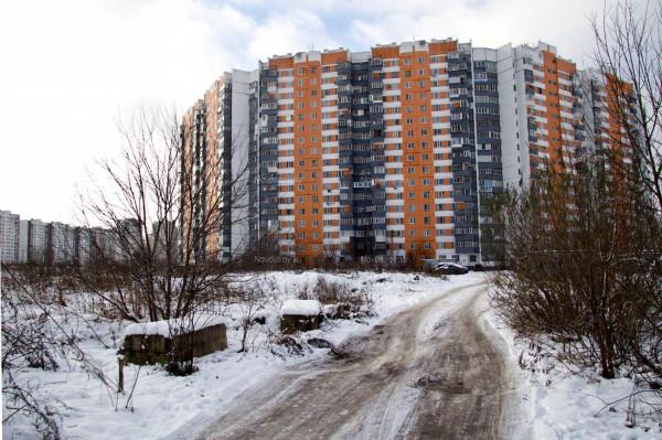 Leningradsky-Pole2