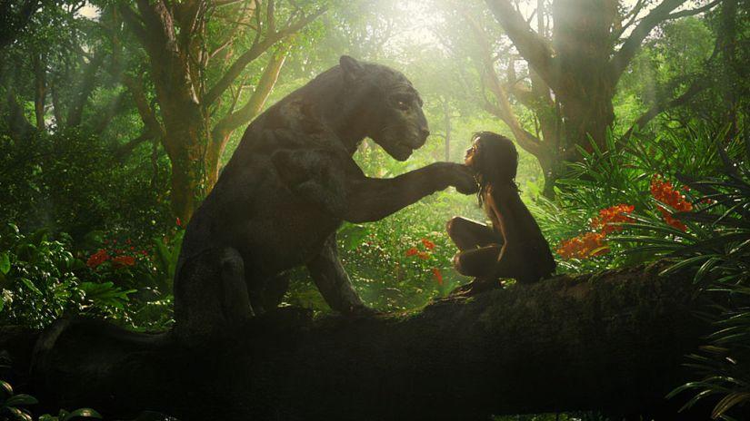 bagheera-mowgli