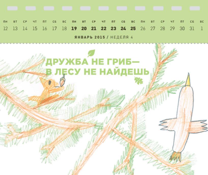 календарь FSC копия 1 — копия