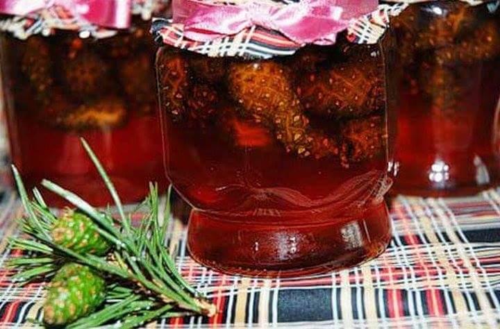 Варенье из еловых шишек рецепт с фото