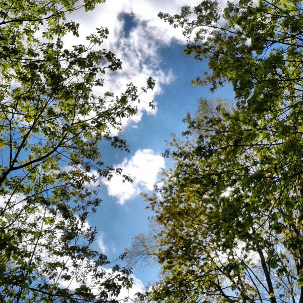Here's our Oak Creek sky amid summer!