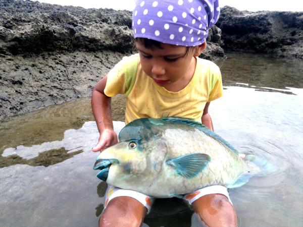 Пра рыбов