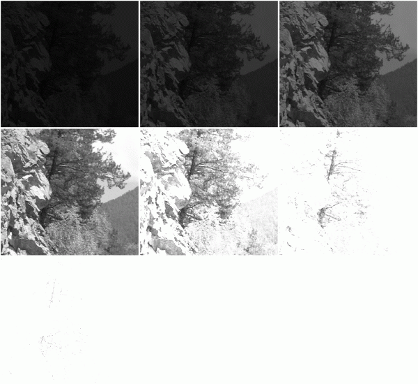 images_gray_tiled