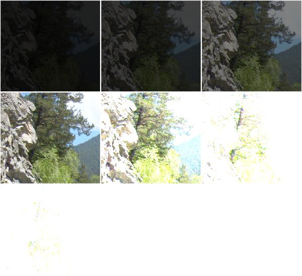 images_tiled