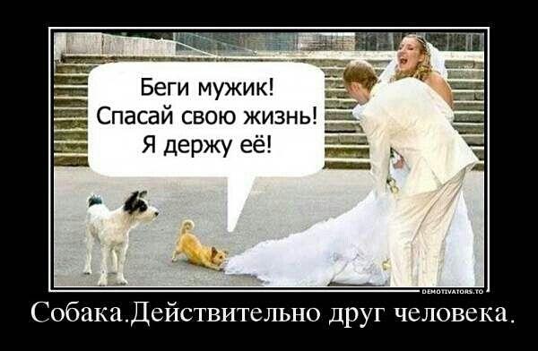 94700908_3416556_getImage_20_1_