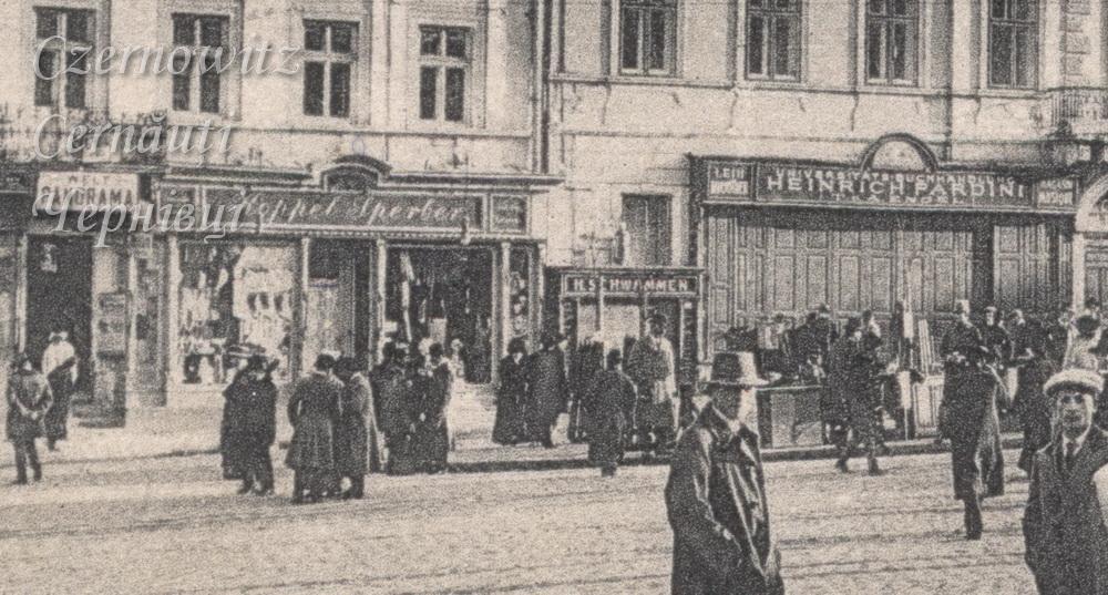 RingPlatz Pardini 290 1916