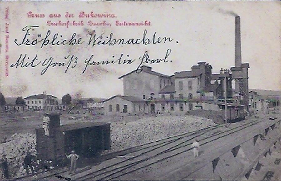 Zuchka 165 1900