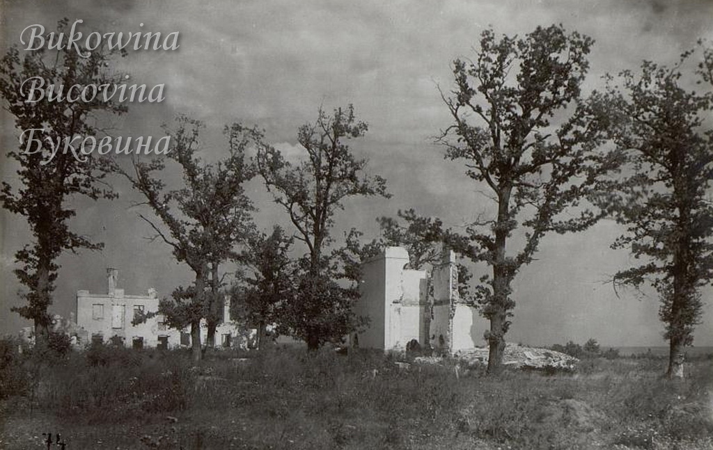 Samuszyn 020 1917