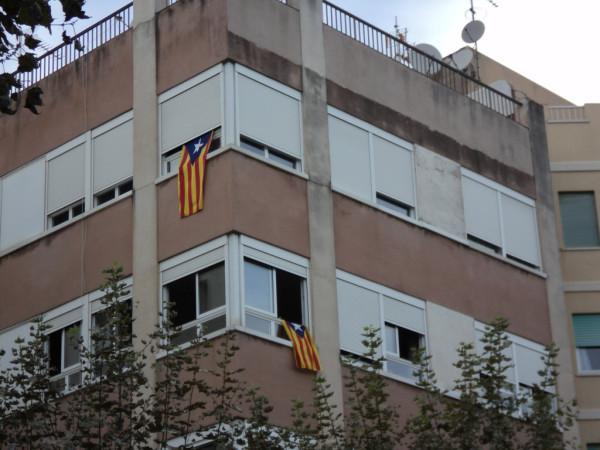 Вот они, флаги