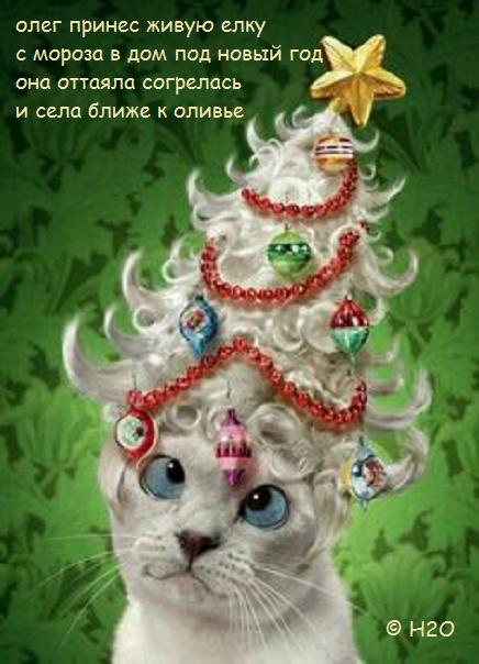 6400091a8baa1a42ac6a575d1b8e8c4a--christmas-cats-christmas-holidays