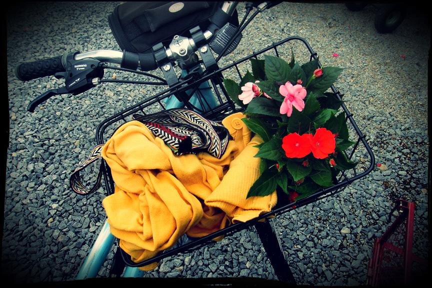 bike basket 6-9-14b