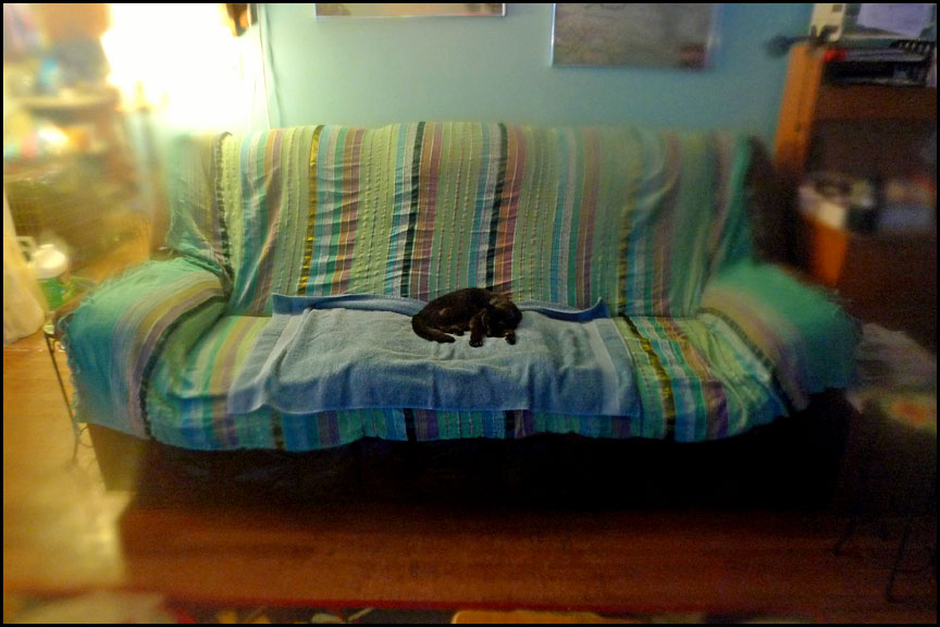 oo-tapo-new-couch-cover-1-15-15