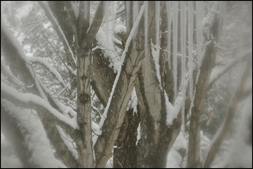 snow-bedroom-window-2-1-15