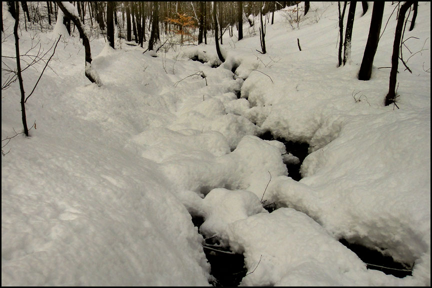 2-1-15-deep-snow-stream.2