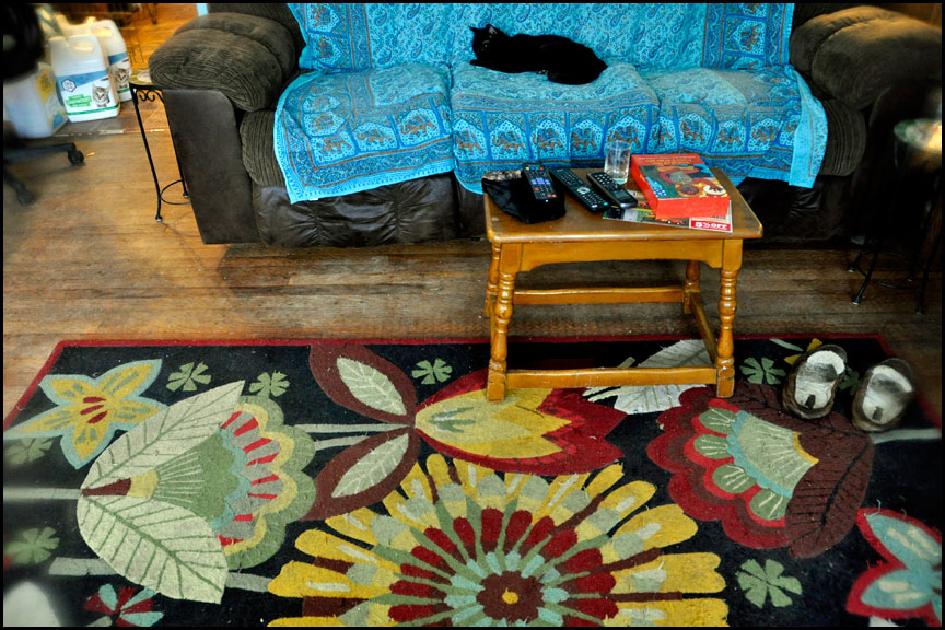living-room-flower-rug-3-4-15