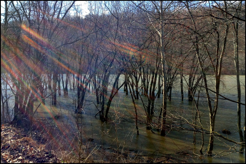 allegheny-river-4-10-15