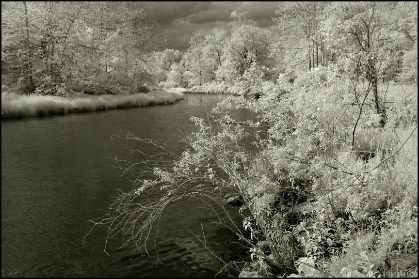 creek-5-25-15