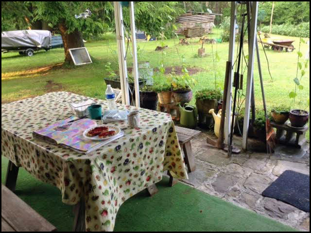 breakfast-back-porch-7-7-15