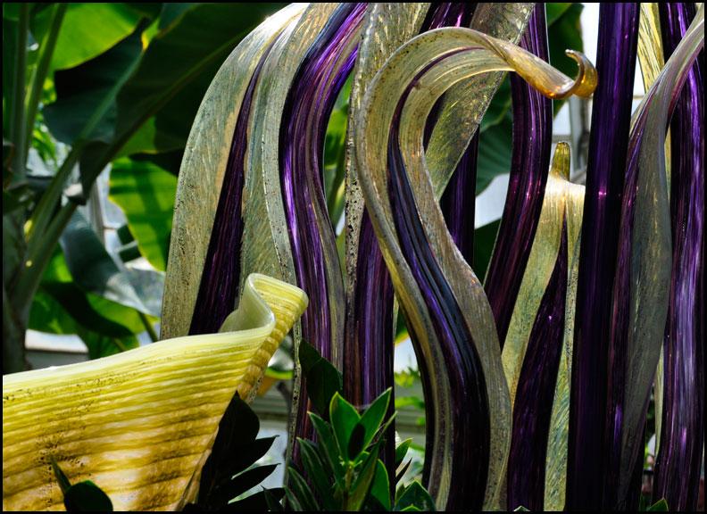 purple-blades