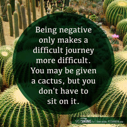 being-negative-cactus2