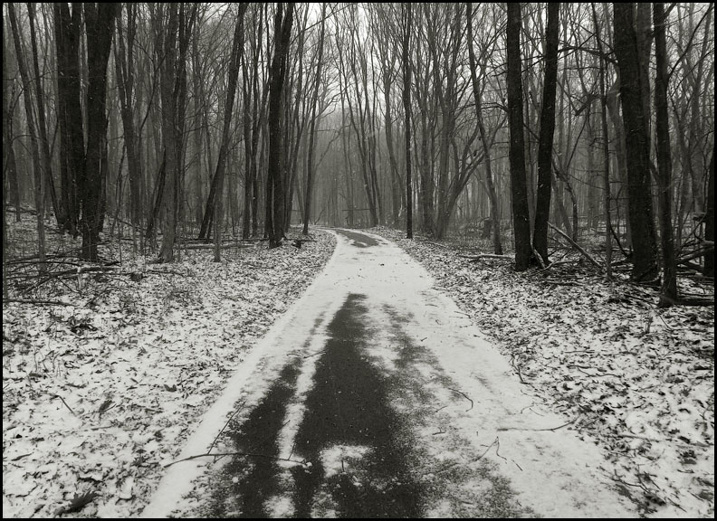 3-2-16-snowy-trail.bnw