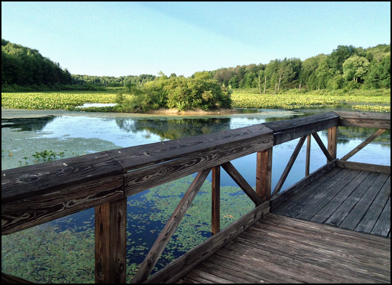 IMG_6176-pier-and-pond