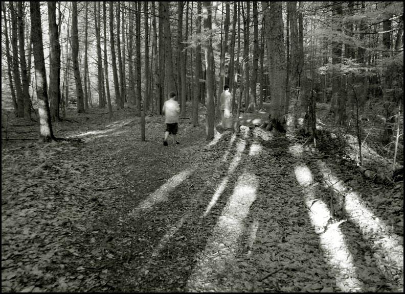 P1030919-tsung-trail-deep-woods
