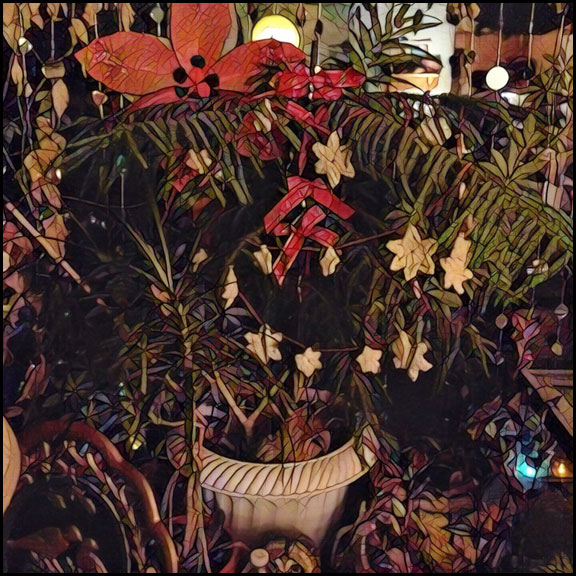 christmas-tree-12-22-16