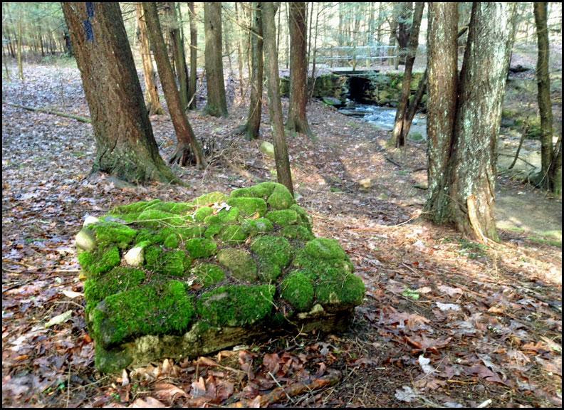 IMG_7438-mossy-lumpy-rock