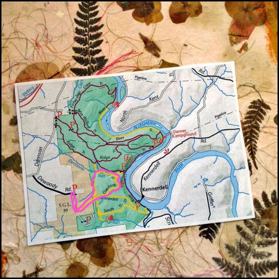 map-joy-1-30-17-pink