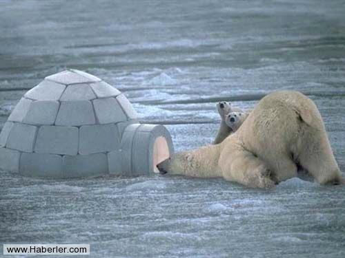 eskimolar-buzdan-evlerini-nasil-isitiyorlar_x_56647_b