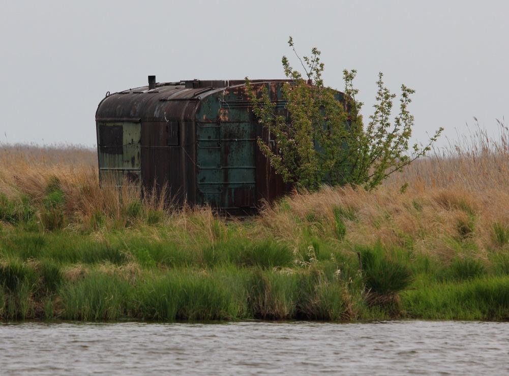 IMG_3460 у Часовенских озер