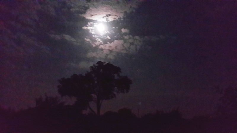 Ночь в Каневской