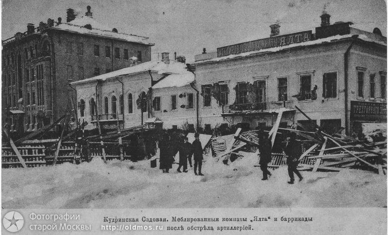 1905.сад.кудр