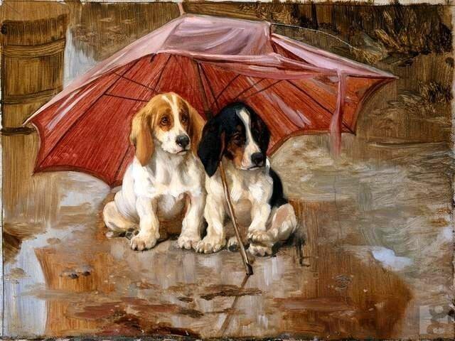 зонт.вильям.генри.гамильтон