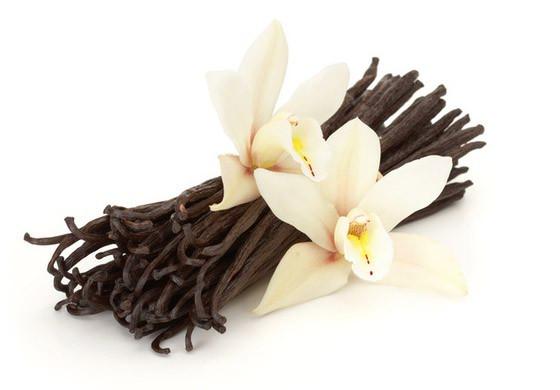 пр.vanil1