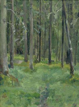 кардовский.лес