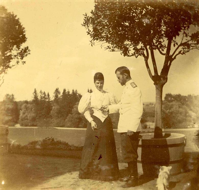 МФ.Ник.1896