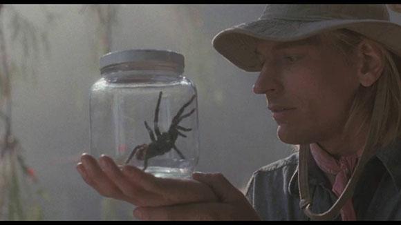 Arachnophobia1.jpg