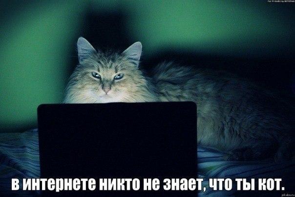 http://ic.pics.livejournal.com/eilin_o_connor/37052114/44878/44878_900.jpg