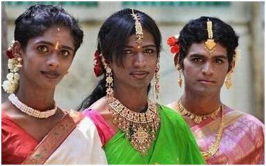 Хиджры Индии https://marginalrevolution.com/marginalrevolution/2017/04/the-hijra-of-india.html