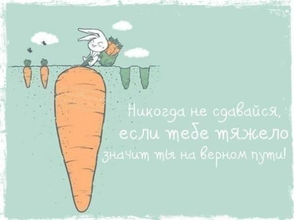 -2rTAZZCrsw