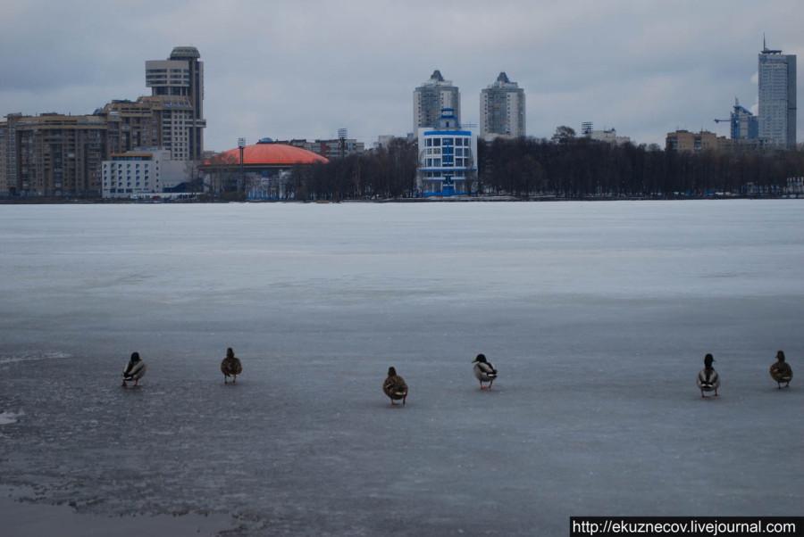 Екатеринбург. Городской пруд